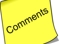 Comments on Interpreter Selina Qiu
